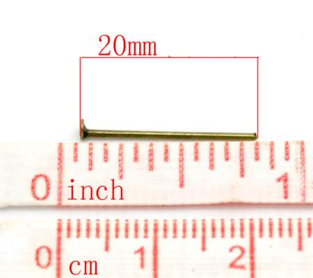 700x bronskleurige nietstiften 20 mm