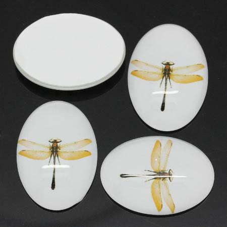 Glazen Cabochon 24 X 18 mm, libelle