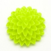 Cabochon chrysant Lime Groen