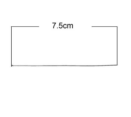 50x Nietstiften RVS 75 mm